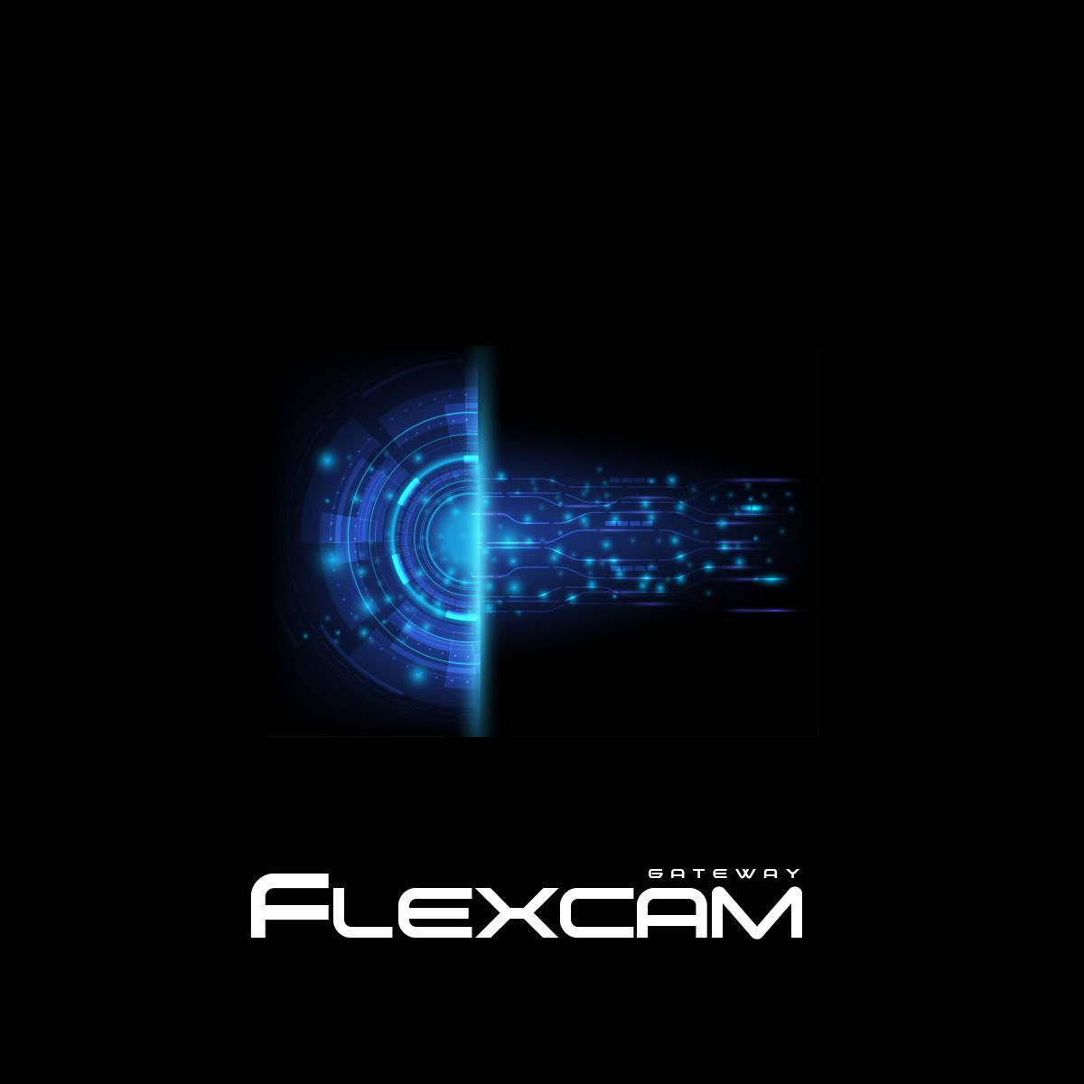 flexcam_gw.jpg